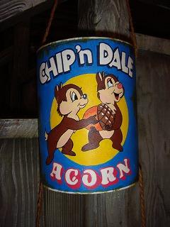 CHIP&DALE's ACORN.jpg